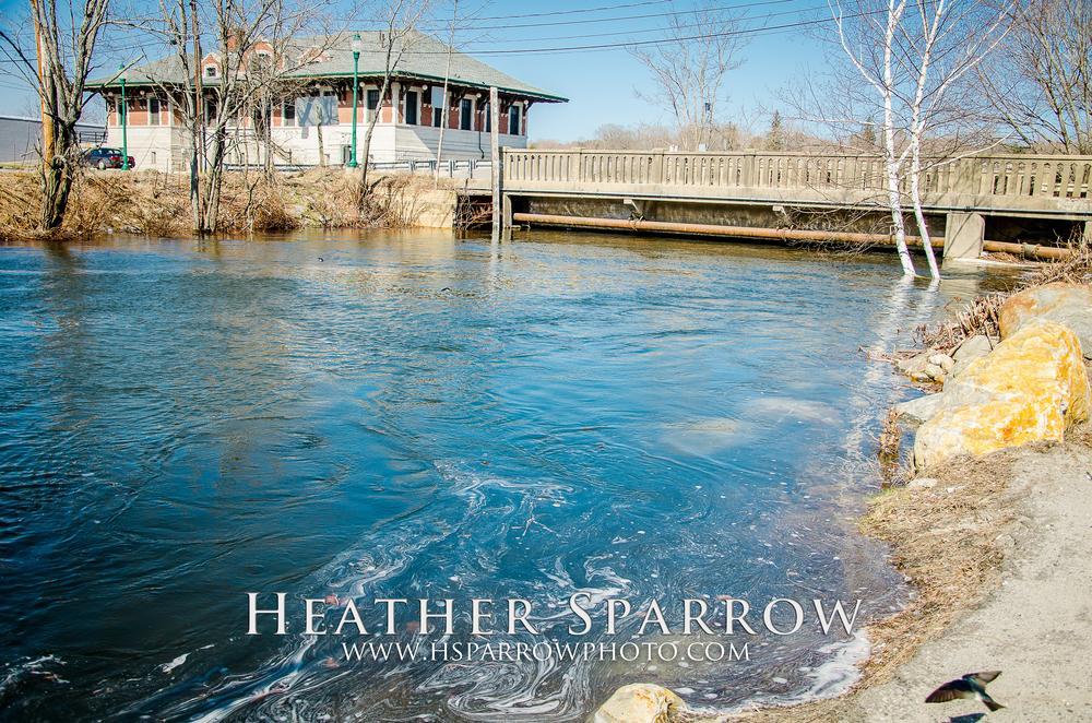 Photo in Landscape #flood #water #bird #blue #bridge