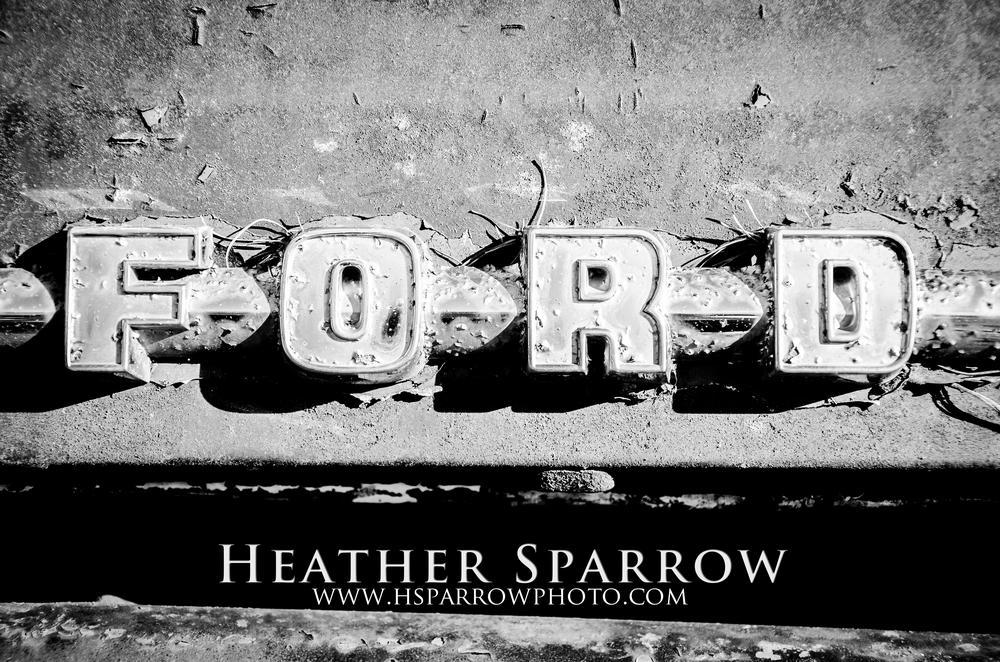 Shadow by Heather Sparrow