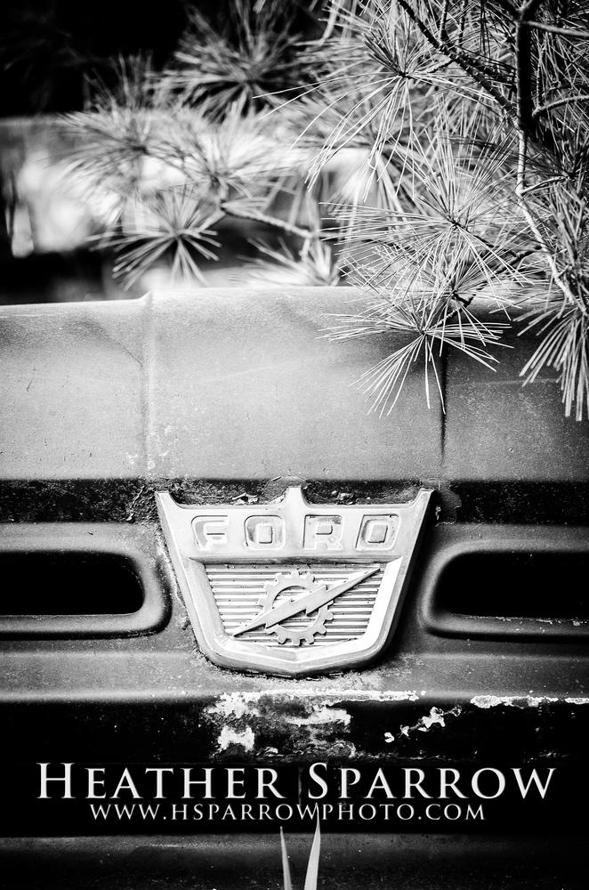 Old Ford by Heather Sparrow