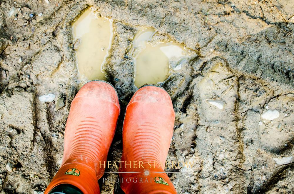 Mud by Heather Sparrow