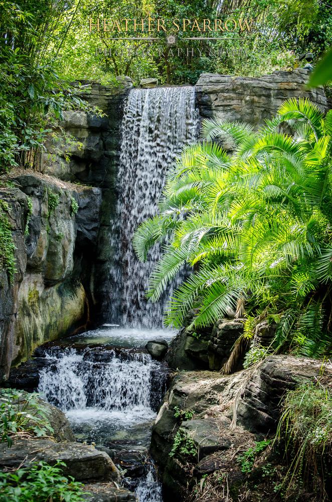 Photo in Landscape #waterfall #water #flow #green #wdw #walt disney world