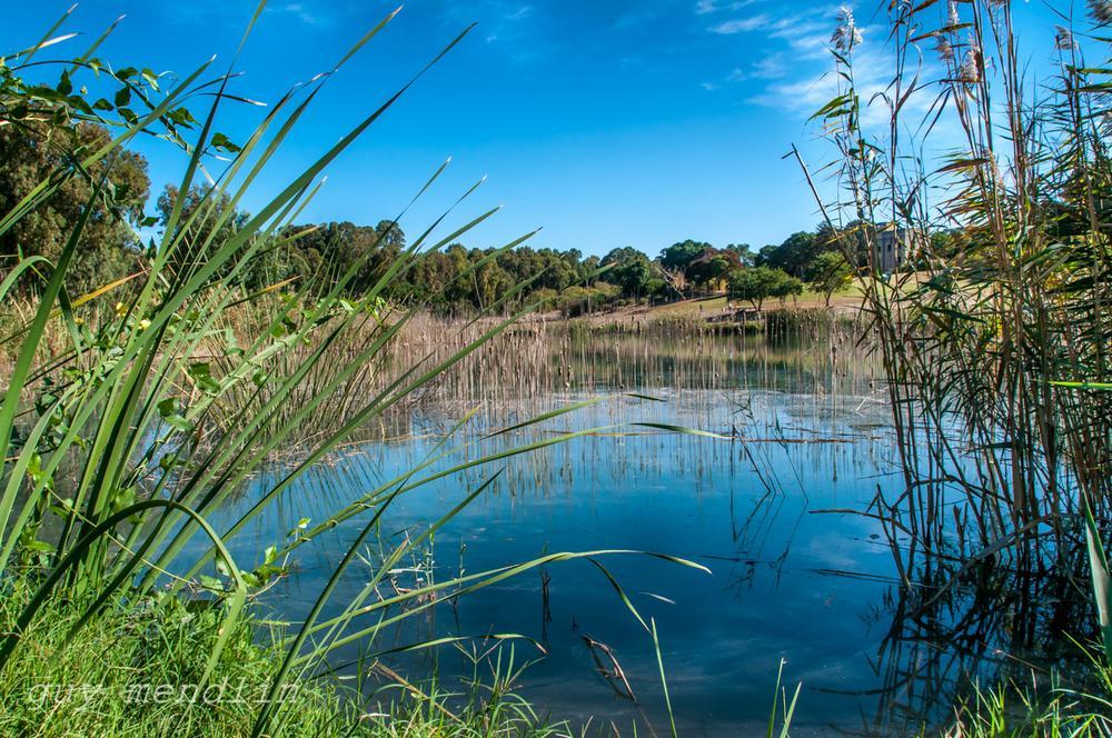 Photo in Fashion #nature #lake