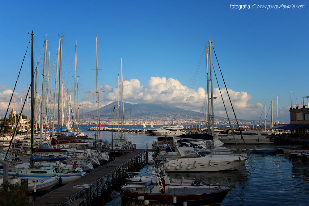 IMG_6379 by Pasquale Vitale