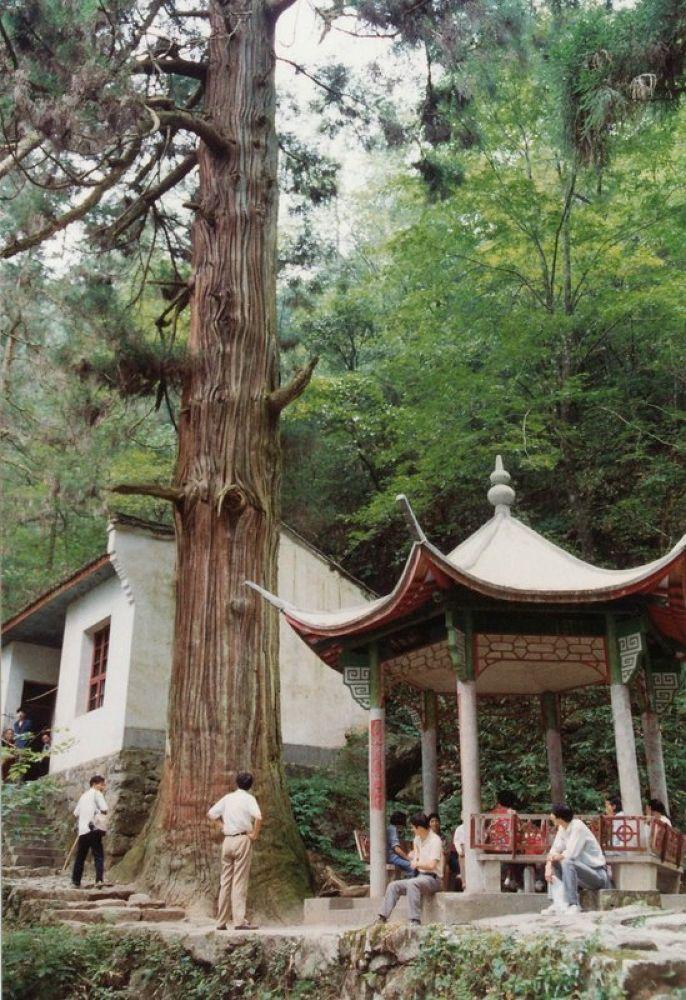 China_Zhejiang_Hangzhou_Tianmoshan_Mountain_1993-112 by Arie Boevé