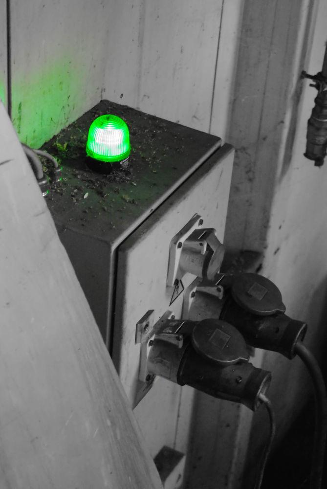 Go Green :) by PoppyHoneyPhotographie