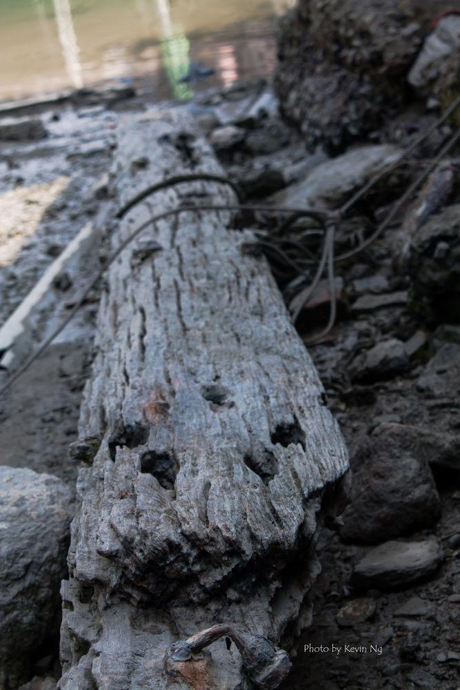 Abandon Wood by kvnck