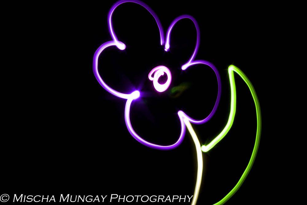 Flower by mischamungay
