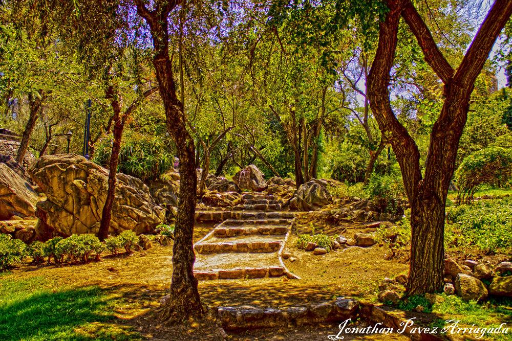 Entrada  al paraiso by jonathanpavezarriagada
