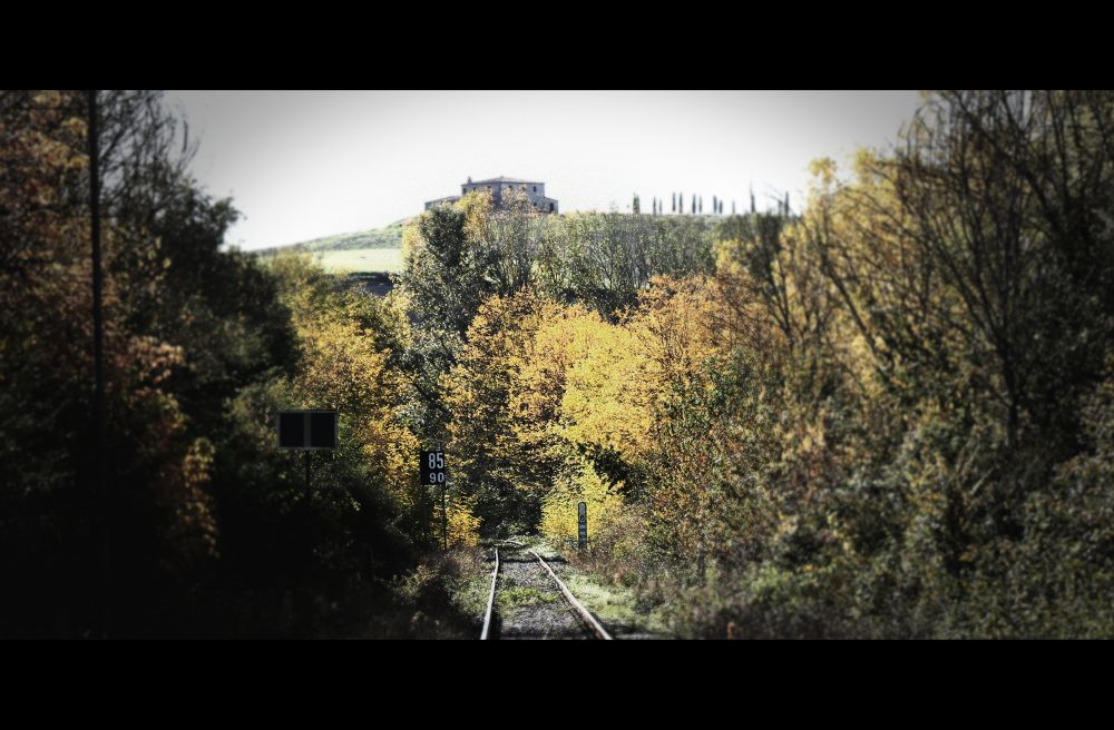 Photo in Random #autumn #toscana #tuscany #autunno #binaries #binari