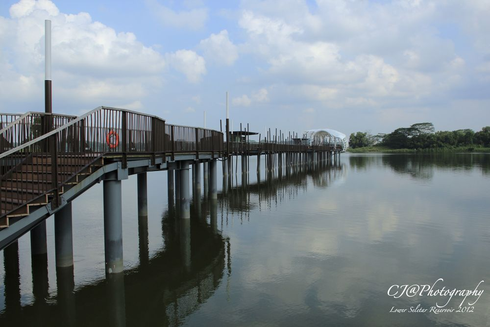 Lower Seletar Reservoir Singapore by chengjun
