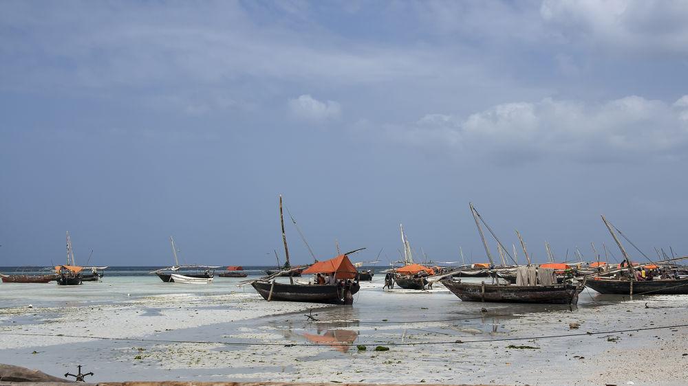 Kizimkazi Beach, Zanzibar by Shimon Aluf