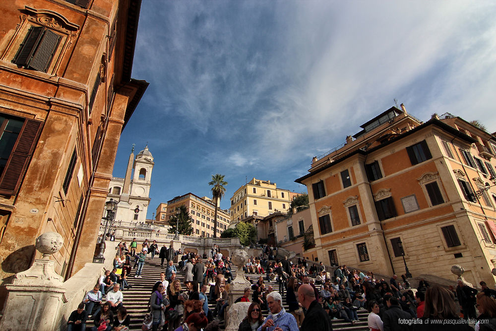 IMG_5550 by Pasquale Vitale
