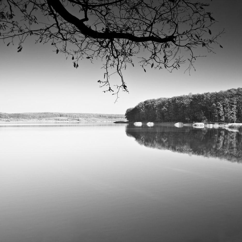 Untitled by AdrianR
