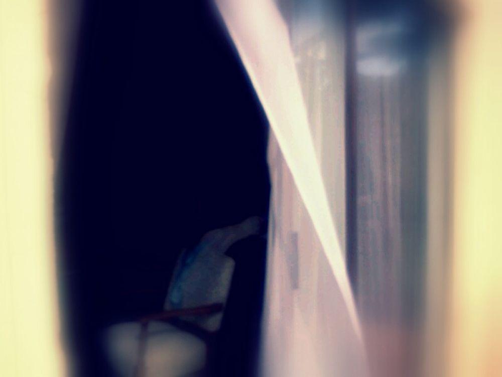 WINDOW-DOOR-22OCT-5-tmp_share by JosephMichaelReynolds