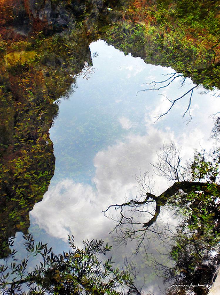 Photo in Nature #nature #paisaje