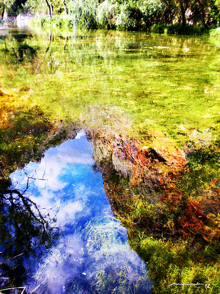 Reflecting by Jose Montal