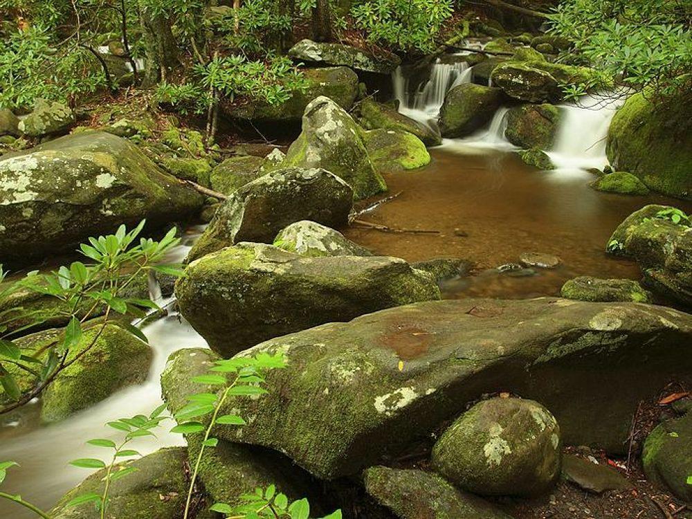 Roaring Fork Great Smoky Mountains by igormuzic
