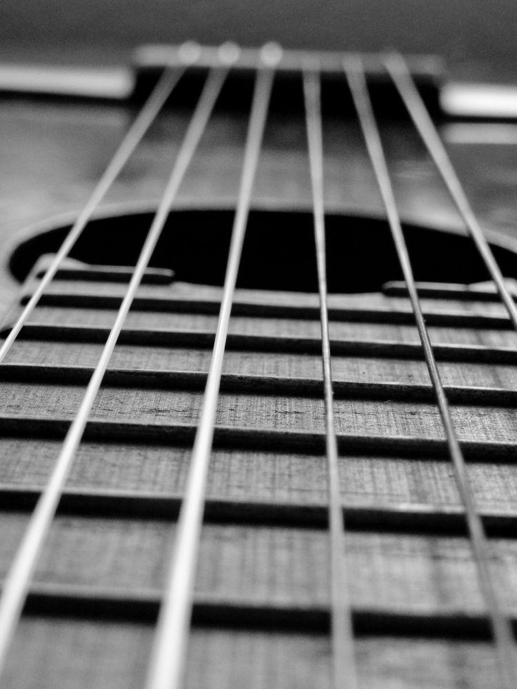 gitar by erkanerdin