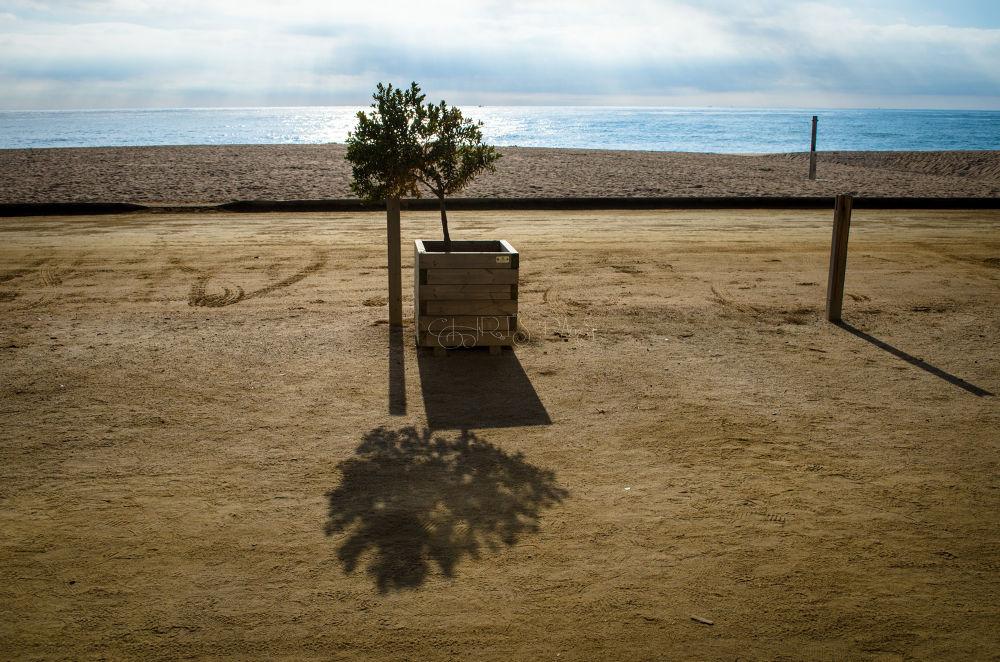 By the beach by Chris Das