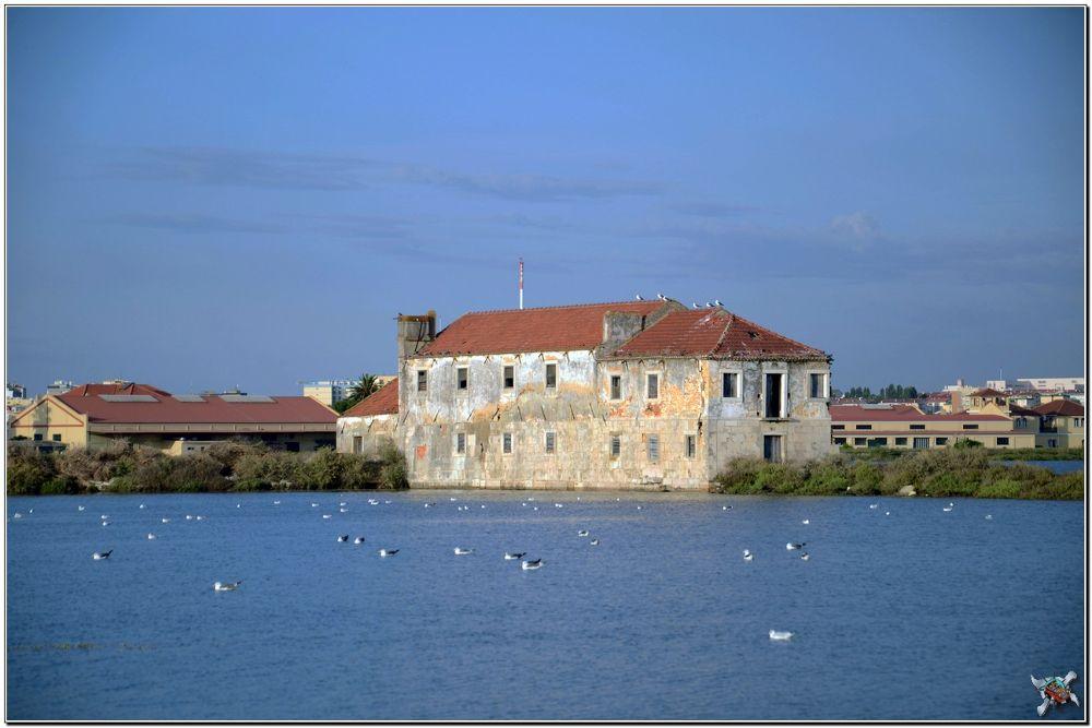 Photo in Random #urbex #water mill of paulistas #seixal