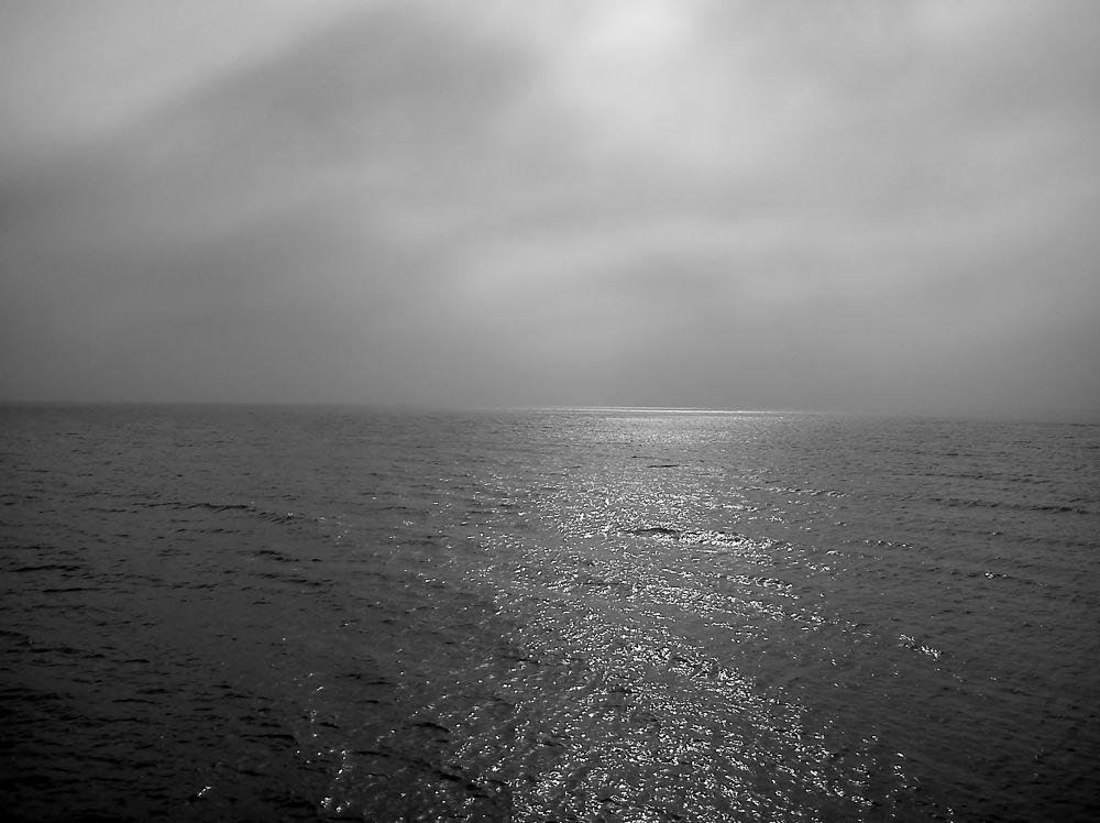 Arabic Ocean Morning  by tamerrezq