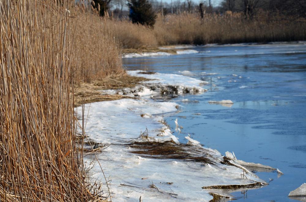 Palmer River's Edge II by lauspics