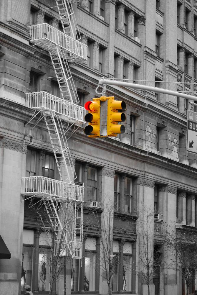 Yellow by PoppyHoneyPhotographie