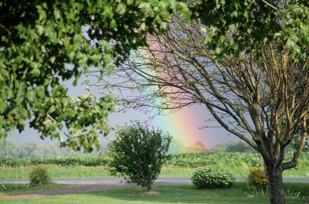 Summer rainbow. Wooster, OH,.  by mbbenfield
