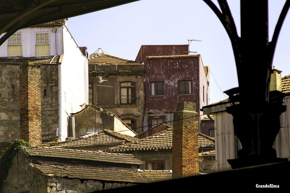 Telhados so Porto by mikopakII