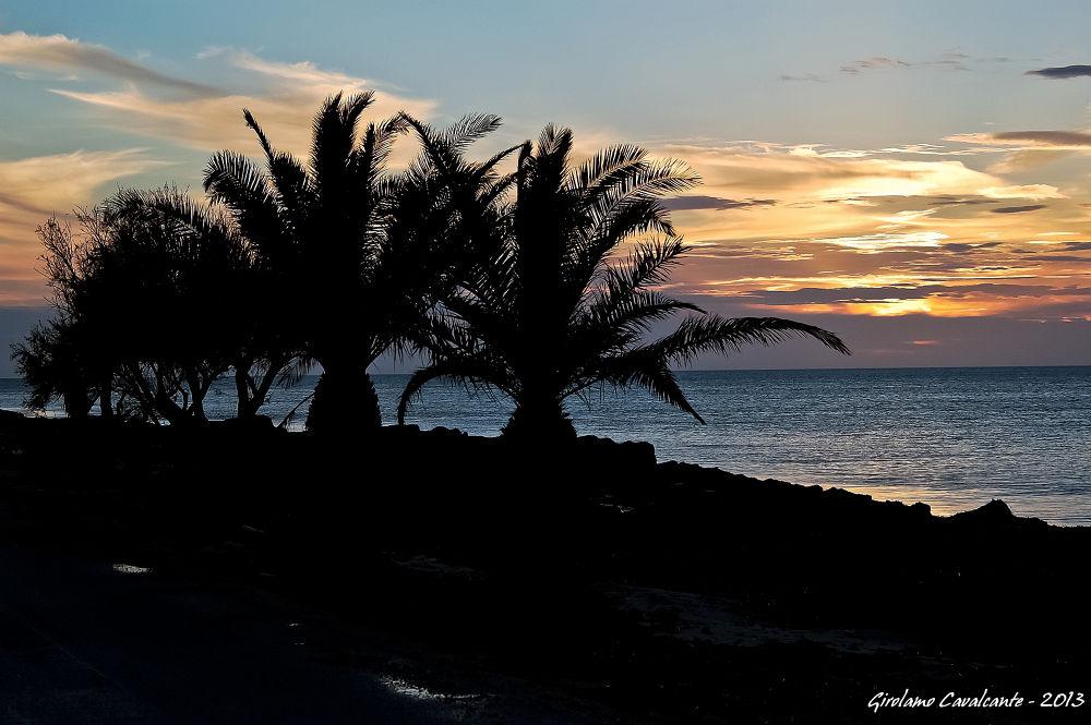 Palms at Sunset by GiroPhoto - Girolamo Cavalcante