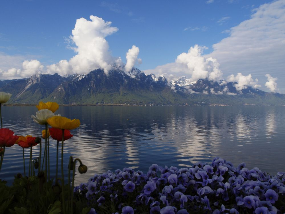 Montreux by tdygini