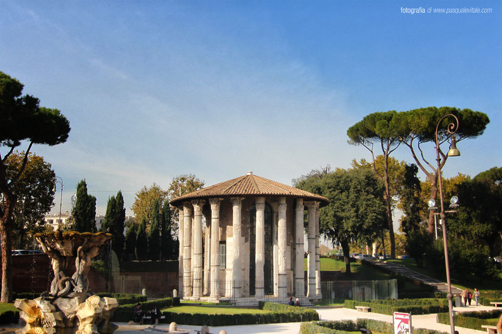 IMG_5503 by Pasquale Vitale