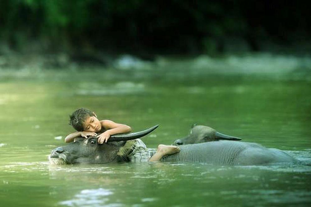 bathe by adithya