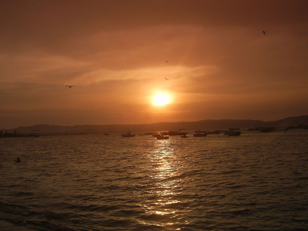 Paracas Marzo2012 601 by cesargty