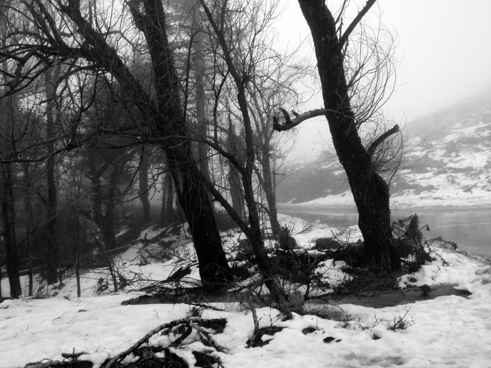 Photo in Random #athens #mountain parnitha