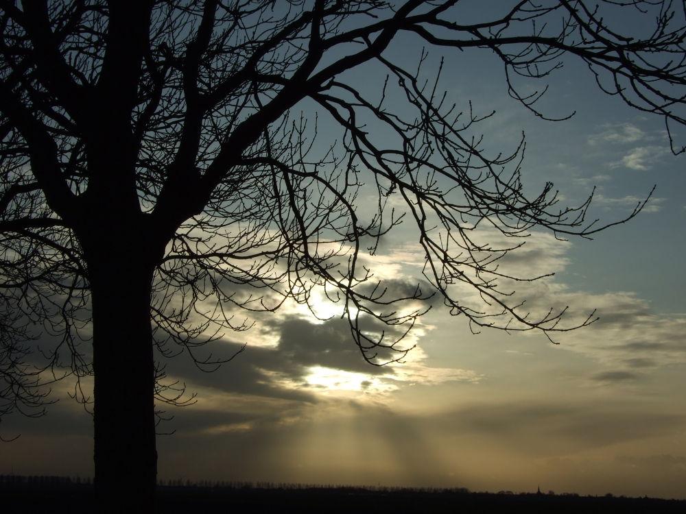 soften the sunbeams by henkhessel