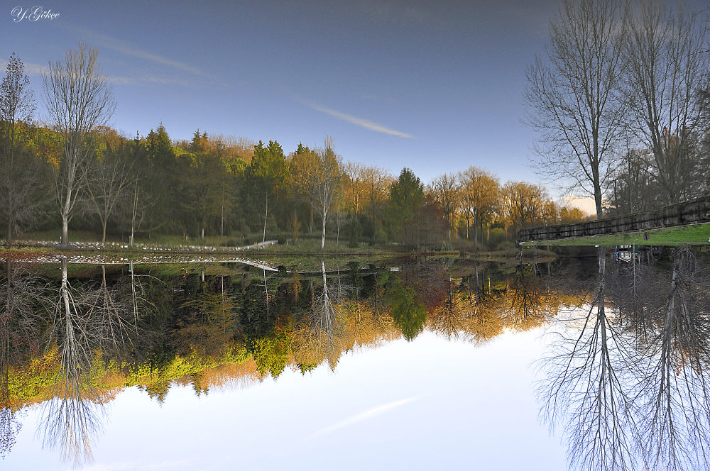 Which of the reflection? up or down by ygokce