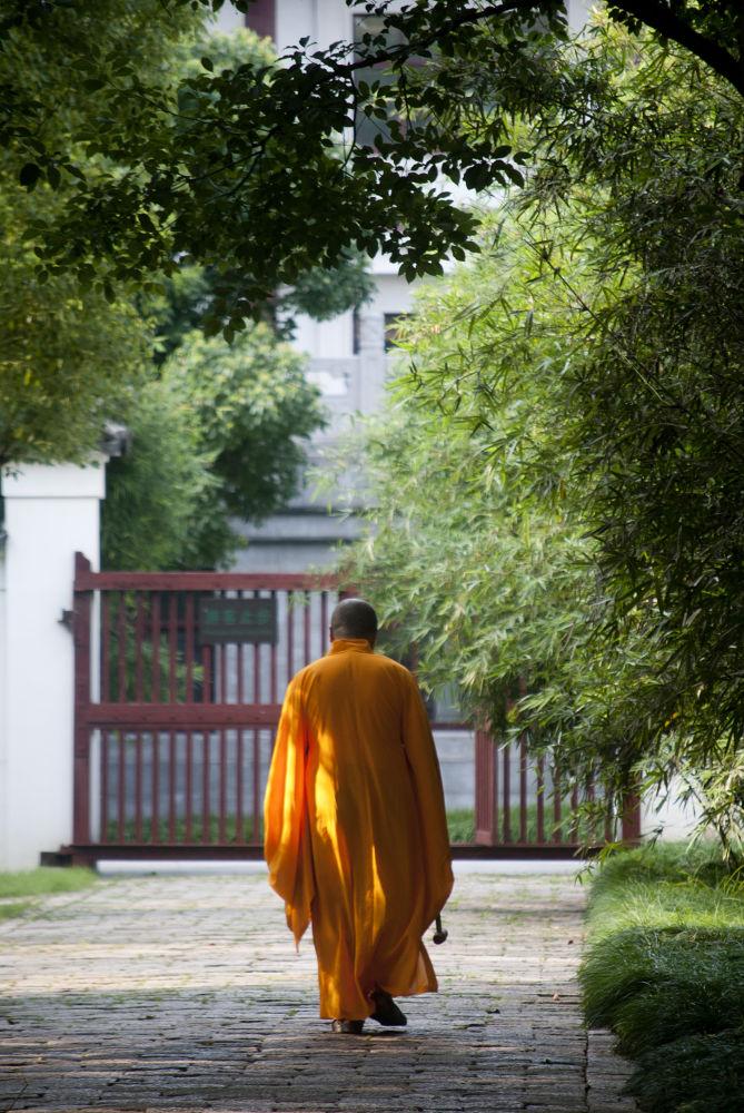 Monk by PhotoDjo