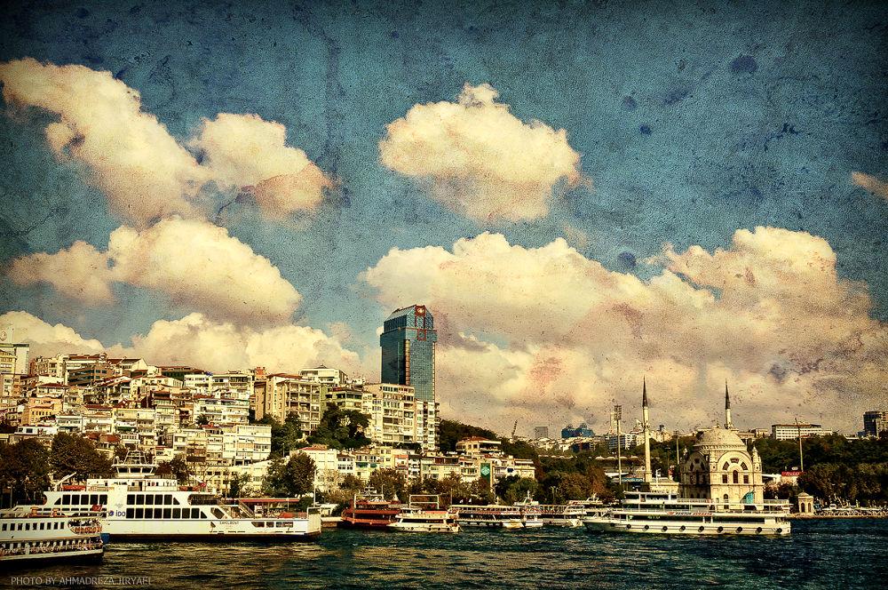 DSC_1905 by ahmadreza nikazar