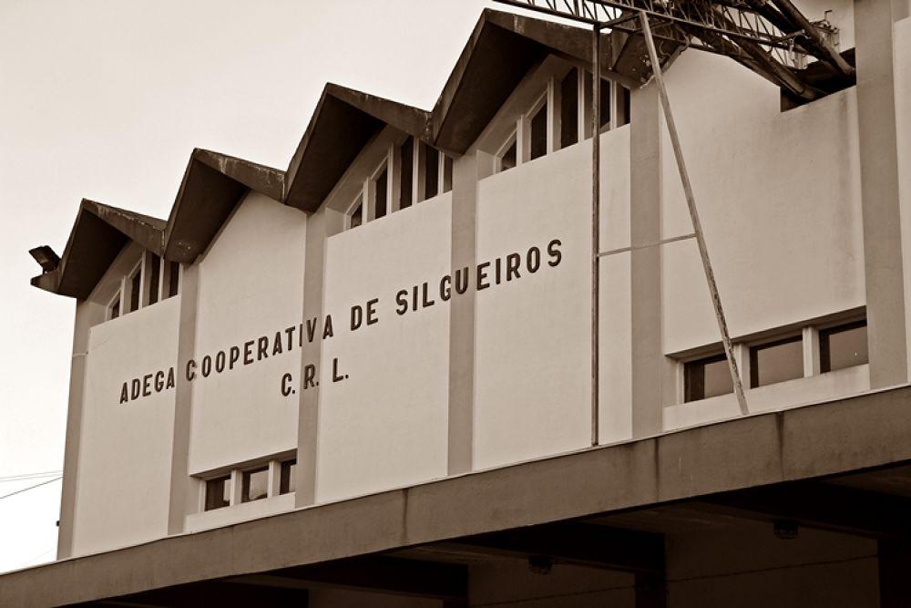 Winery Union Silgueiros  by AROCHA