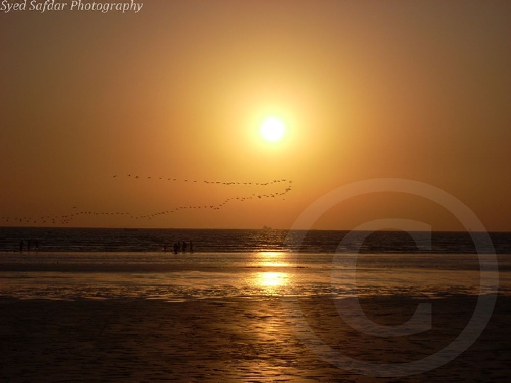 Sunset Birds comp by syedsafdar