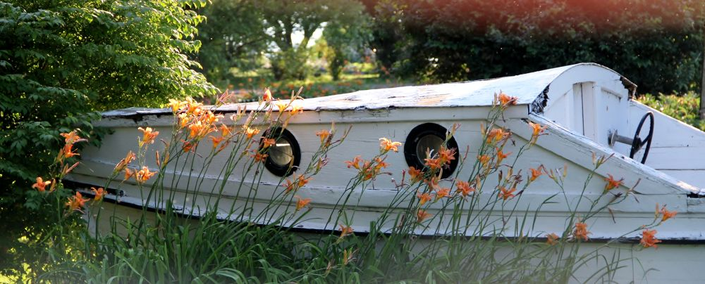 Old boat garden. Vermont.  by mbbenfield