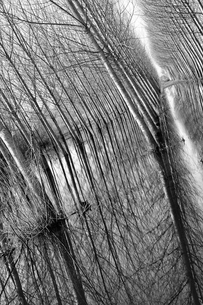 Padule Anchione_07 by antoniorescignogeom