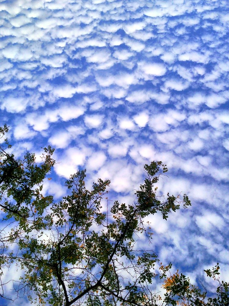 Mar De Nubes by EstacionJungla