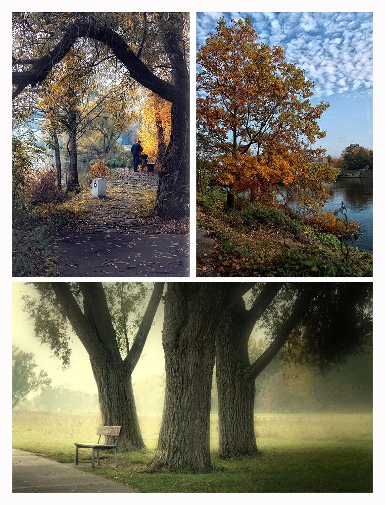 autumn by Engist
