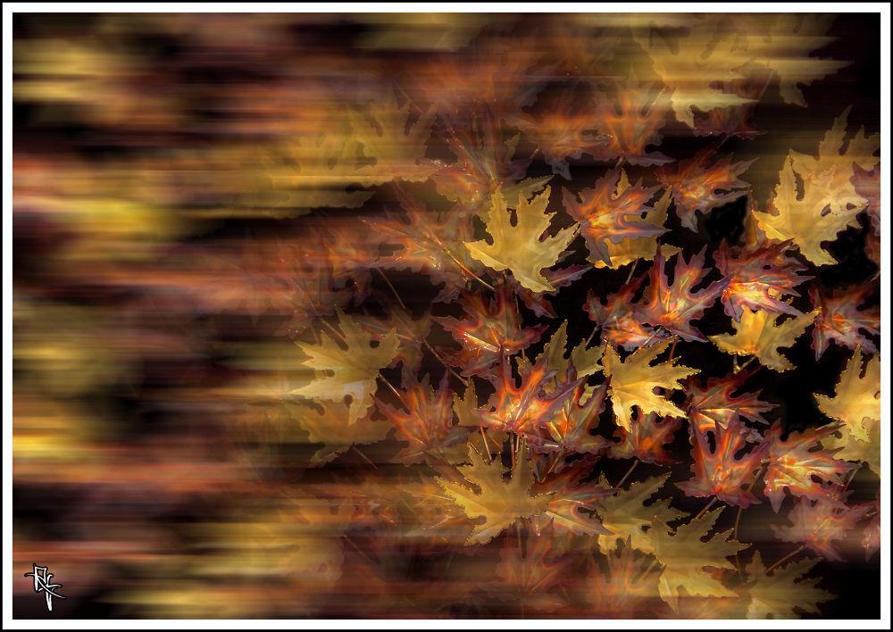 Fall Leaves by xelaxu