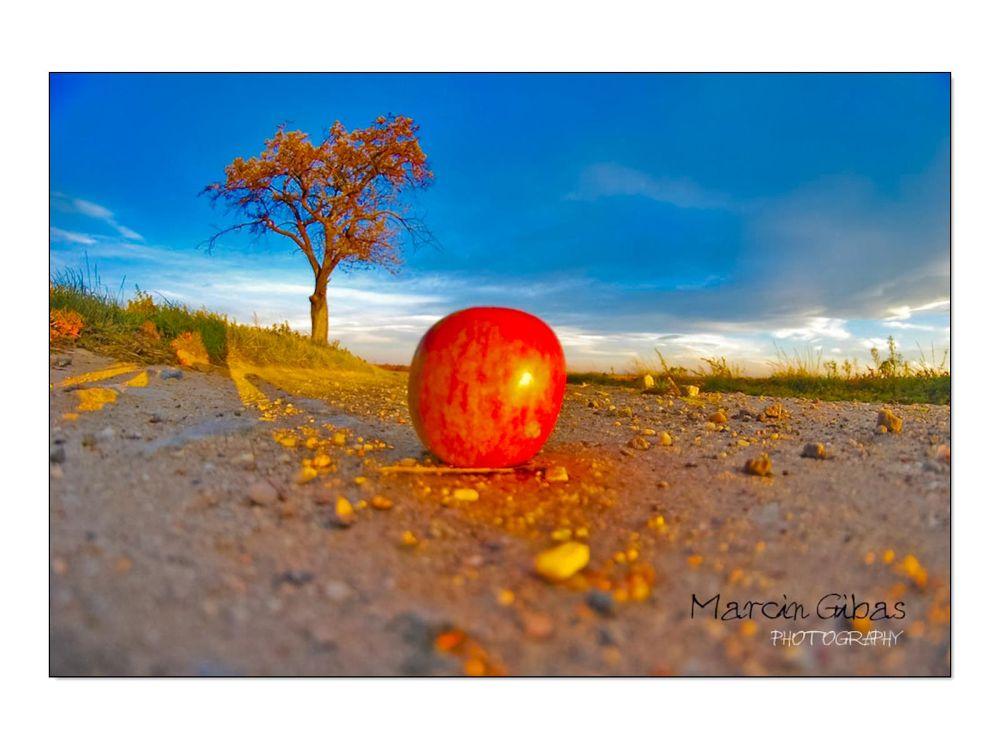 .... by marcingibasfotograf