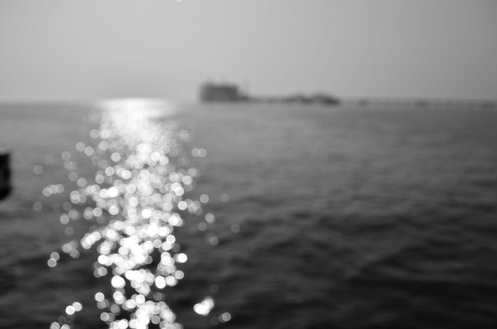 DSC_0929 by Akshay Shinde