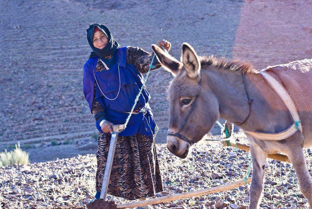 femme du maroc by prospecteur
