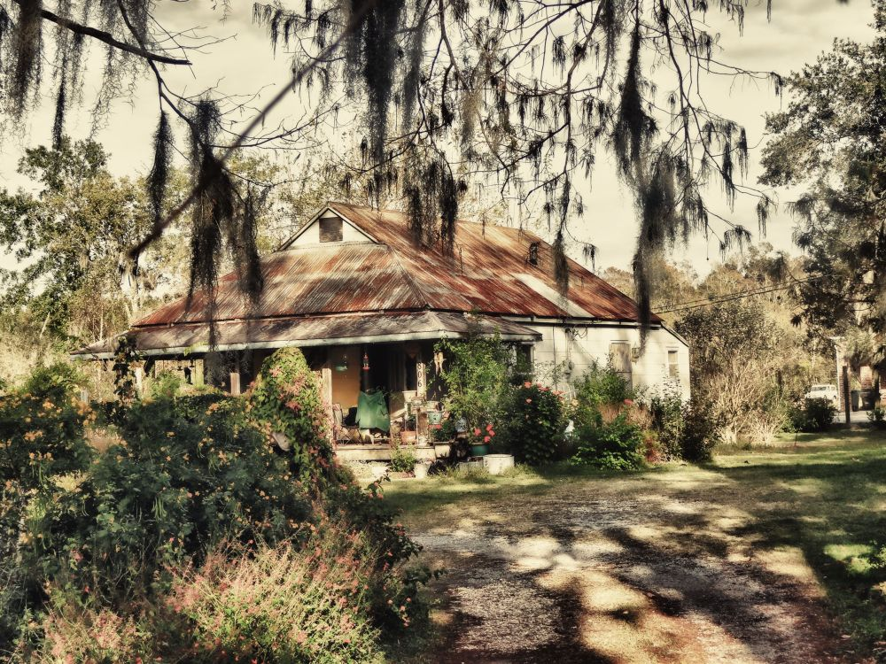 Cajun Cottage Throught the Trees  by jwbama